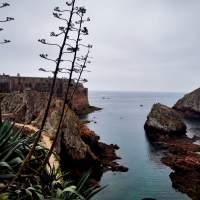 tour privado ilha berlengas e peniche